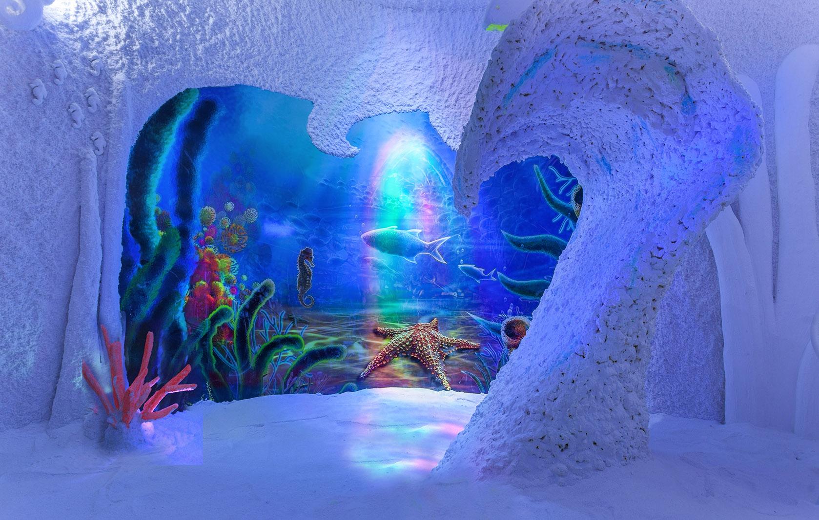 Rain Forest. Cuevas de Sal
